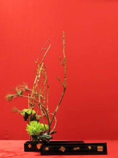 Rami, crisantemi e pino - foto Fabio Uggeri