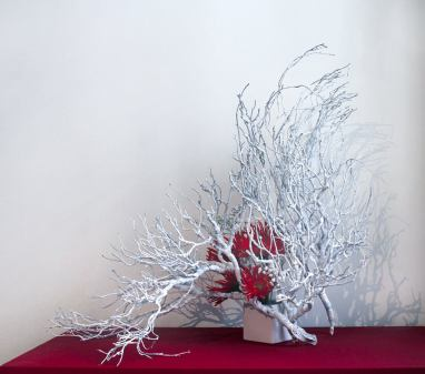 Silvia Barucci: Composing with Branches