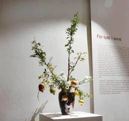 Lucio Farinelli: Fruiting Plant Materials
