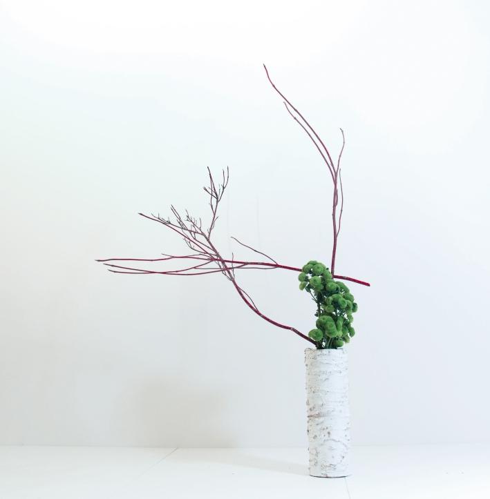Il mio ikebana - Foto Luca Ramacciotti